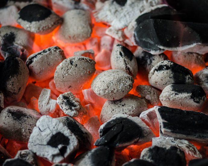 Węgiel orzech - czym on jest?
