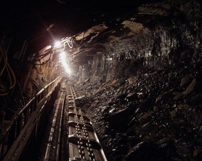 Zalety węgla rosyjskiego